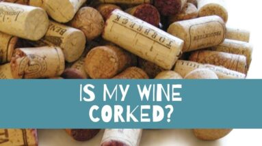 Is My Wine Corked? - What is a corked wine?