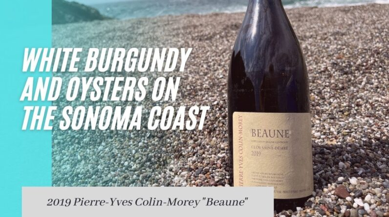 Amazing Oyster Wine Pairing! White Burgundy Wine Review on the Sonoma Coast